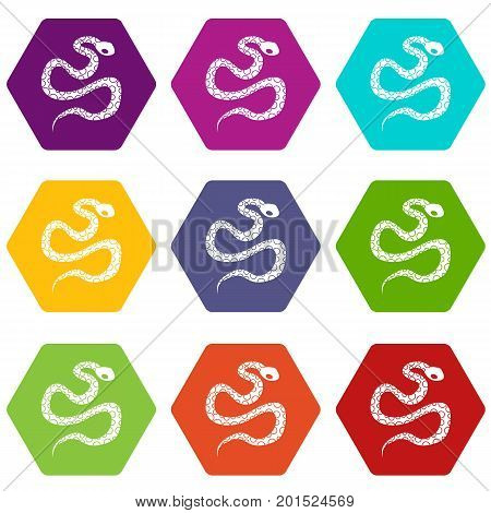 Python snake icon set many color hexahedron isolated on white vector illustration