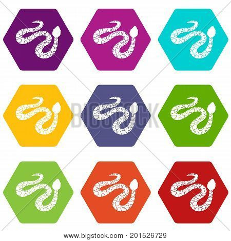 Spotted snake icon set many color hexahedron isolated on white vector illustration