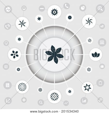 Elements Bouquet, Chrysanthemum, Chrysanthemums And Other Synonyms Daffodils, Apple And Narcissus.  Vector Illustration Set Of Simple Blossom Icons.