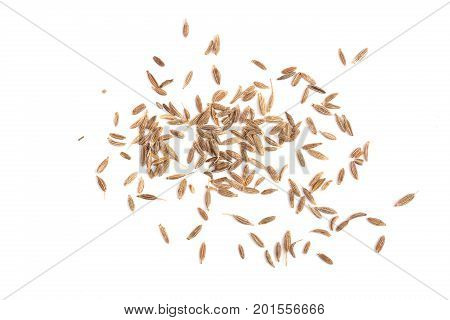 Cumin seeds or caraway isolated on white background,