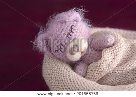 Cute handmade toy bear sleeping in knitted bag on blurred background