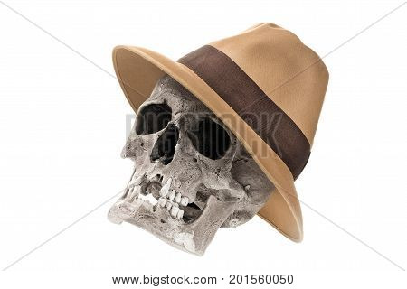 Adventure concept. Human skull with fedora hat isolated on white