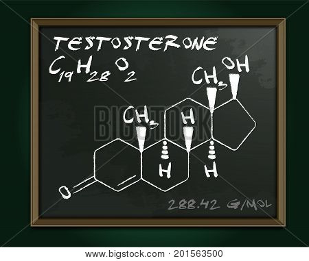 Testosterone molecule image. Vector illustration in white color handwritten on a dark background. Chemistry, biology, medicine and healthcare concept with chalk handwriting. Medical class blackboard.