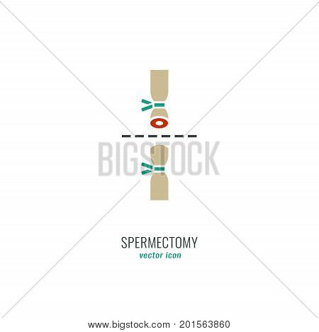 Man Contraception Pictogram. Spermectomy icon in medical colours. Vector illustration in flat style.