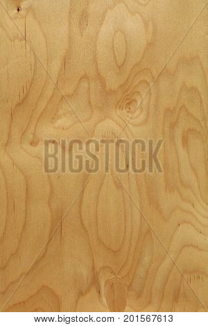 Rough Plywood Wood Grain Background Close Up