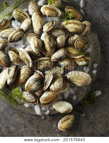 Raw whole clams on crushed ice sitting on an antique silver platter
