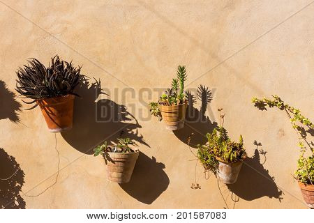different colorful plant or flower pots hanging on a stone wall in old beautiful idyllic mediterranean lonesome village town
