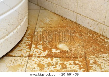 Water with scale and deposits from a boiler spilled on a bathroom floor