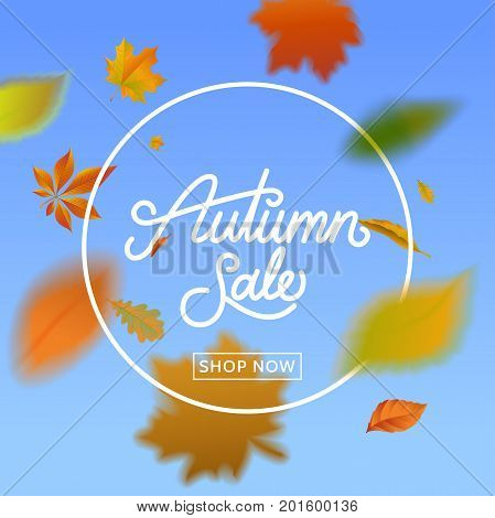 Autumn sale calligraphy on blue sky background with falling leaves . Fall sale banner with foliage. Template for promo advertising flyer poster. Vector eps 10.