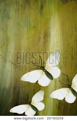 butterflies in flight on textured rough background