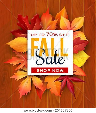 Autumn sale poster of fall leaves of maple, chestnut or poplar and oak on wood background. Vector seasonal autumn shopping discount promo sale web banner design of birch and aspen foliage