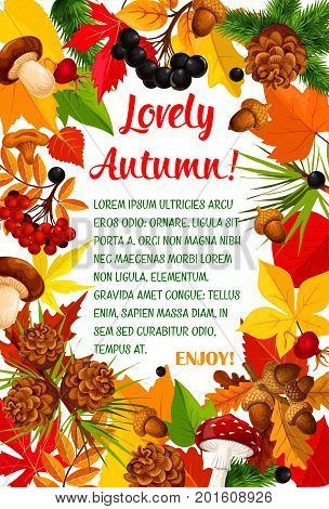 Autumn leaf and mushroom poster with frame of fall season nature. Orange maple leaves and chestnut foliage banner border with forest mushroom, acorn, briar and rowan berry for autumn themes design