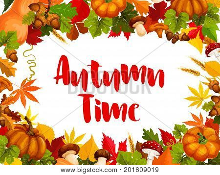 Autumn time poster of fall nature template. Autumn maple leaf, fall harvest season pumpkin vegetable, acorn, chanterelle, amanita, cep mushroom, wheat and forest tree foliage for greeting card design