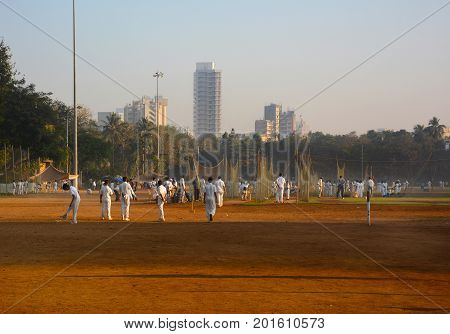 Teams Practicing Cricket In Mumbai