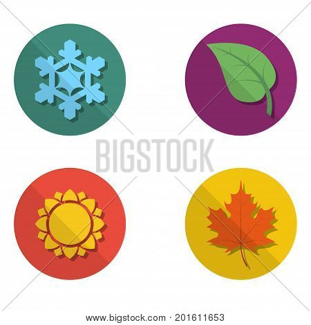 Four colored icons with seasons. Four nature seasons icon isolated on white