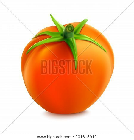 Red whole tomato isolated on a white background, close-upwith a green tail. A fresh tomato cut out with the clipping path, 3D illustration.