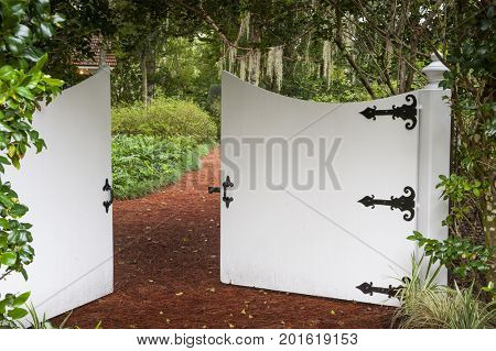 Secret garden entrance gate trail path covered with lush green leaves plants foliage private park oasis