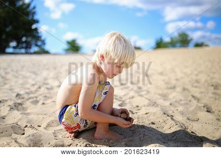 A cute little blonde haired boy child is crouched down searching for and collecting rocks and seashells at the beach on a summer day.