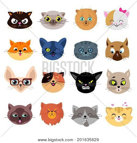 Heads of cute cat characters with different emotions vector. Set of cats head enamored and funny illustration