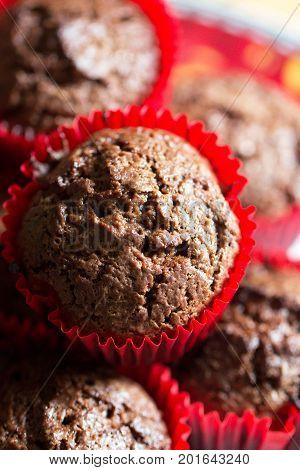 chocolate muffins. Homemade chocolate muffins. Homemade bakery take muffin for coffee break