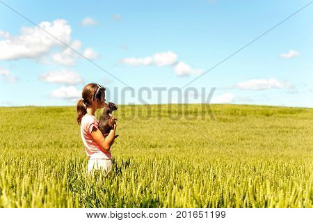 Young teenage girl in wheat field holding her lovely little toy-terrier dog contemplating the nature. Multicolored vibrant outdoors summertime horizontal image with cloudy sky background.