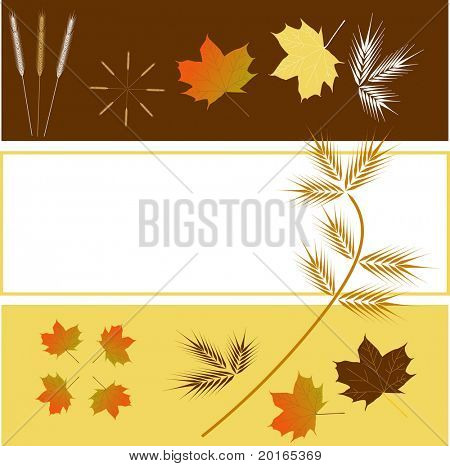 leaves  and grass in fall colors with 3 tiered layout with copyspace