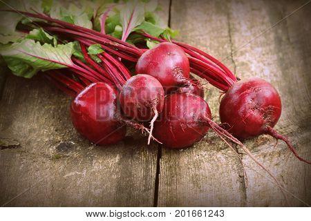 Fresh beetroot i on rustic wooden background. Harvest vegetable cooking conception . Diet or vegetarian food concept .