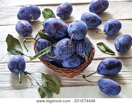 Plums fruit useful dietary big fresh fresh harvest juicy beautiful sweet lying in a wicker basket and on a wooden background with green leaves