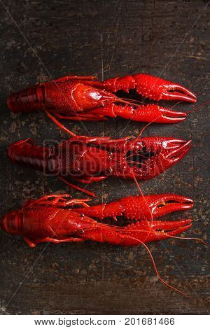 Delicious Boiled Crayfish Close-up. Dark Background. Dinner With