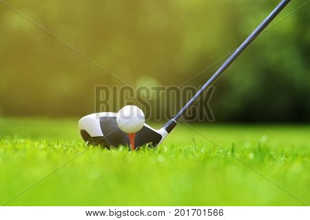 Golf ball on tee in front of driver on a gold course grass green fieldthe driver positioned ready to hit the ball