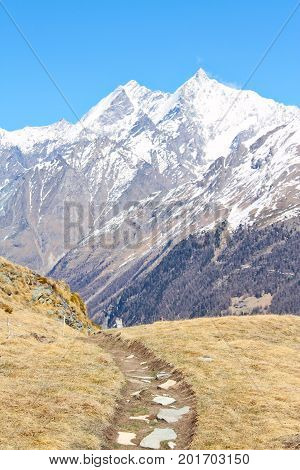 A trail in the high Alps with snow covered peaks in the background.