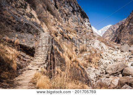 Trail To The Mbc On The Annapurna Base Camp Trek, Nepal