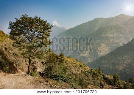 View Of The Machapuchare On The Annapurna Base Camp Trek, Nepal