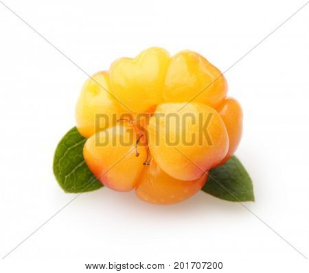 Cloudberry Berry isolated on white background