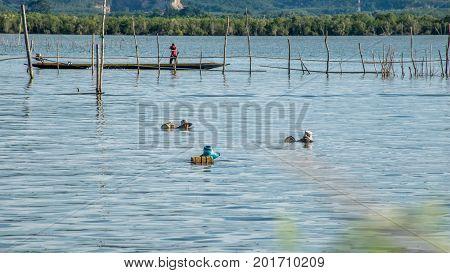 Yo Island Songkhla Thailand - September 4 2016 : Fishermen are finding fish and shrimp in Songkhla Lake.