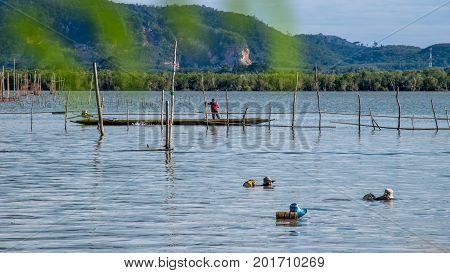 Yo Island Songkhla Thailand - September 4 2016 : The fishermen are finding fish and shrimp in Songkhla Lake.