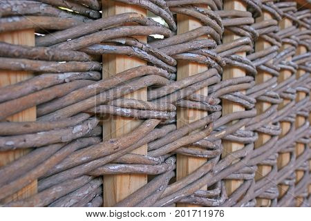 The Wooden Fence Of Intertwined Brown Branches Of The Tree