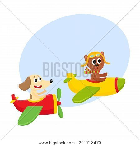 Cute funny animal pilot characters flying on airplane - bear and dog, cartoon vector illustration with space for text. Little baby bear and dog characters flying on airplane