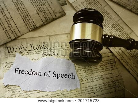 Freedom of Speech message on pages of the US Constitution with court gavel -- First Amendment concept