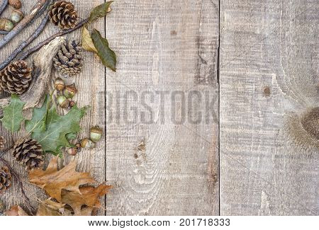 Rustic Wood Plank Background With Autumn Leaves, Acorns, Pinecones And Branches