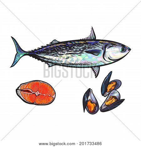 vector sketch cartoon sea fish tuna, salmon red fish fillet, mussels set. Isolated illustration on a white background. Sea delicacy food concept