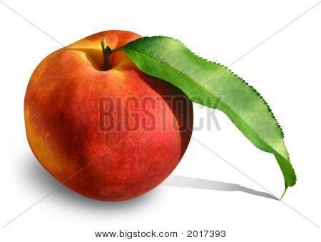 Peach With Leaf 2
