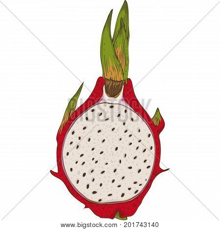 Dragon Fruit or Pitaya in Cross Section with Seeds Isolated on a White Background