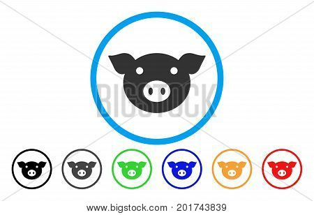 Pig Head vector rounded icon. Image style is a flat gray icon symbol inside a blue circle. Additional color versions are gray, black, blue, green, red, orange.
