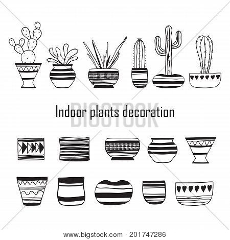 Set of plants and empty flower pots . Vector doodle illustration.