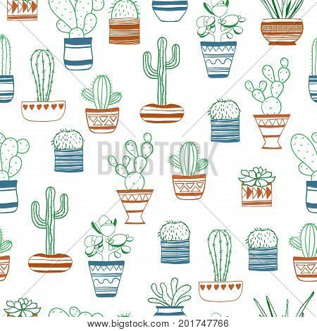 Seamless vector pattern with colored contours succulents .