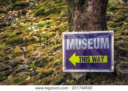 India museum sign with arrow at forest, Darjeeling.