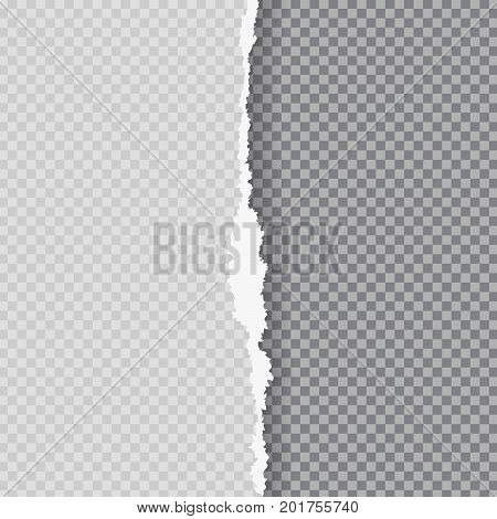 Torn paper with ripped edge. Flyer, poster, card template with space for text. Graphic design element for scrapbook decoration, advertising page, wallpaper. Grunge cut paper piece. Vector illustration