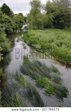 River Avon in Chippenham Wiltshire From Gladstone Road Bridge