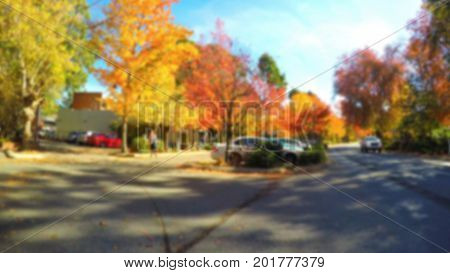 Blurred Background Of Street Lined With Colorful Autumn Trees.
